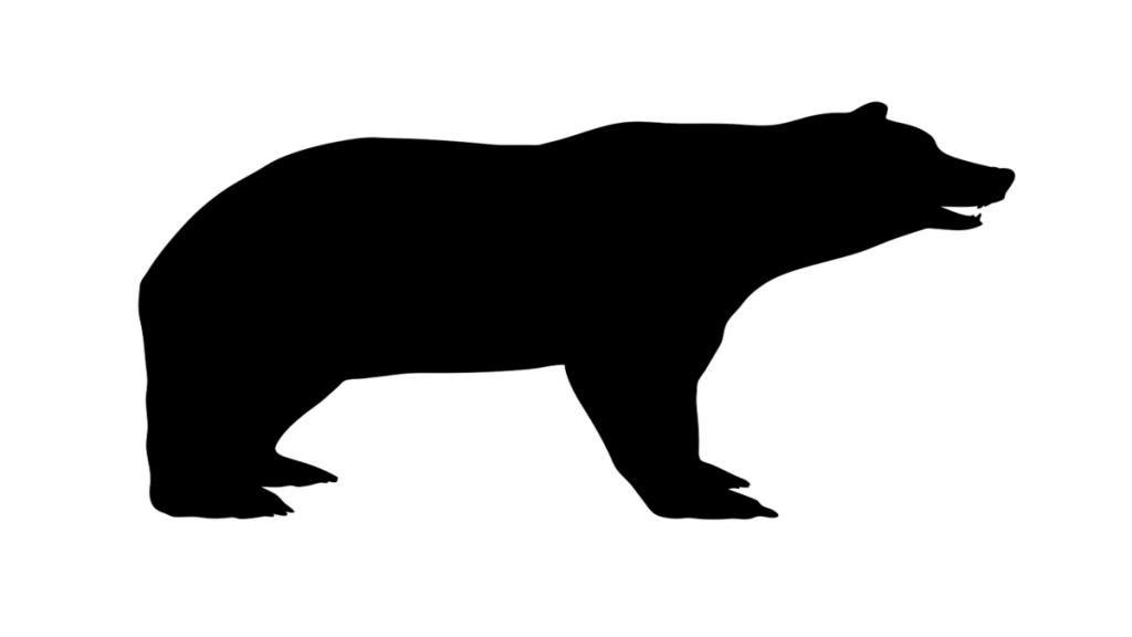 Bear marked market bjørn aksjer trading