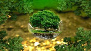 ESG – Environment, Social og Governance